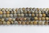 CAA2352 15.5 inches 12mm round crazy lace agate beads wholesale