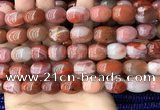 CAA4570 15.5 inches 12*15mm - 12*18mm rice south red agate beads