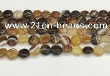 CAA4588 15.5 inches 12mm flat round banded agate beads wholesale