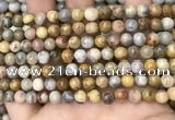 CAA4934 15.5 inches 6mm round yellow crazy lace agate beads wholesale