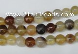 CAA890 15.5 inches 6mm round agate gemstone beads wholesale