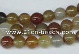 CAA891 15.5 inches 8mm round agate gemstone beads wholesale