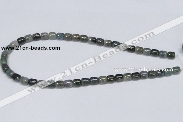 CAB391 15.5 inches 8*8mm column moss agate gemstone beads wholesale