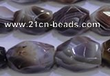 CAG2775 15.5 inches 14*20mm faceted nuggets botswana agate beads wholesale