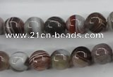 CAG3683 15.5 inches 10mm round botswana agate beads wholesale