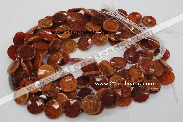 CAG639 15.5 inches 20mm faceted coin natural fire agate beads