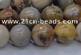 CAG6674 15.5 inches 12mm round natural crazy lace agate beads