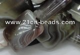 CAG740 15.5 inches 16*20mm rectangle botswana agate beads wholesale