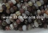 CAG746 15.5 inches 4*6mm faceted rondelle botswana agate beads