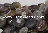 CAG751 15.5 inches 10mm faceted coin botswana agate beads wholesale