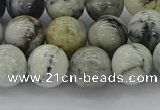 CAG9733 15.5 inches 10mm round black & white agate beads wholesale