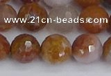 CAG9914 15.5 inches 12mm faceted round red moss agate beads