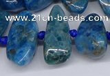CAP533 15.5 inches 10*20mm - 15*35mm freeform apatite beads
