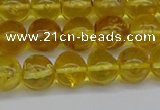 CAR552 15.5 inches 7mm - 8mm round natural amber beads wholesale