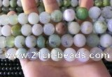 CAU464 15.5 inches 13mm - 14mm round Australia chrysoprase beads