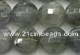 CCB726 15.5 inches 8mm faceted coin labradorite gemstone beads