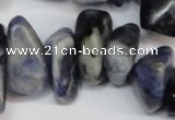 CCH300 34 inches 8*12mm sodalite chips gemstone beads wholesale