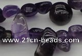 CCH615 15.5 inches 6*8mm - 10*14mm amethyst chips gemstone beads