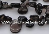 CCH623 15.5 inches 6*8mm - 10*14mm smoky quartz chips beads