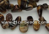 CCH638 15.5 inches 6*8mm - 10*14mm yellow tiger eye chips beads