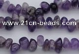 CCH649 15.5 inches 4*6mm - 5*8mm amethyst gemstone chips beads