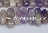 CCH710 15.5 inches 5*10mm - 5*15mm dogtooth amethyst chips beads