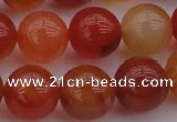 CCL64 15.5 inches 12mm round carnelian gemstone beads wholesale