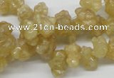 CCR85 15.5 inches 12mm chip citrine gemstone beads wholesale