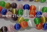 CCT1214 15 inches 4mm round cats eye beads wholesale