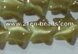 CCT866 15 inches 10mm star cats eye beads wholesale