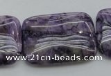 CDA312 15.5 inches 25*35mm rectangle dyed dogtooth amethyst beads