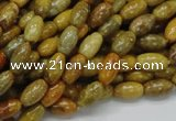 CFA35 15.5 inches 6*10mm rice yellow chrysanthemum agate beads