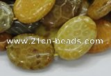 CFA48 15.5 inches 18*25mm oval yellow chrysanthemum agate beads