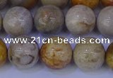 CFC204 15.5 inches 12mm round fossil coral beads wholesale