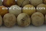 CFC224 15.5 inches 12mm round matte fossil coral beads wholesale