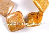 CFC23 15.5 inches 20mm rhombus fossil coral  beads Wholesale