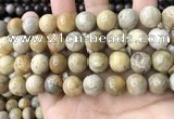 CFC325 15.5 inches 14mm round fossil coral beads wholesale