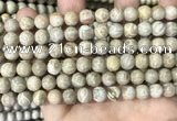 CFC333 15.5 inches 8mm round fossil coral beads wholesale