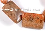 CFC40 15 inches 18*25mm rectangle fossil coral beads Wholesale