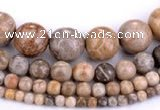CFC55 15.5 inches round coral fossil jasper beads wholesale