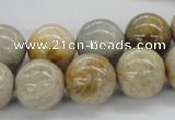 CFC65 15.5 inches 16mm round fossil coral beads wholesale