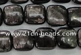 CHS82 15.5 inches 14*14mm square natural hypersthene beads
