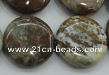 CJA07 15.5 inches 25mm coin green jasper beads wholesale