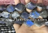 CLB1047 15.5 inches 18*22mm - 20*25mm faceted freeform labradorite beads