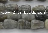 CLB719 15.5 inches 8*12mm teardrop labradorite gemstone beads