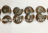 CMM10 15.5 inches 30*40mm - 35*45mm carved ammonite gemstone beads
