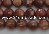 CMS1012 15.5 inches 8mm faceted round AA grade moonstone beads