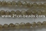 CMS1066 15.5 inches 4mm faceted round grey moonstone beads wholesale