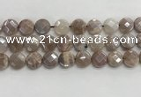 CMS1791 15.5 inches 14mm faceted coin AB-color moonstone beads