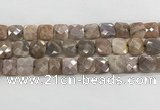CMS1830 15.5 inches 14*14mm faceted square AB-color moonstone beads